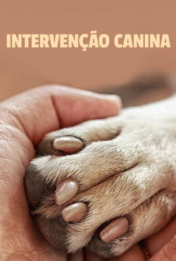 Intervenção Canina 1ª Temporada Completa Torrent (2021) Dublado 5.1 WEB-DL 1080p – Download
